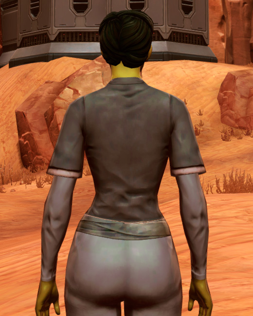 Bantha Hide Armor Set Back from Star Wars: The Old Republic.