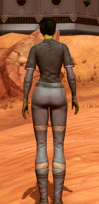Bantha Hide Armor Set player-view from Star Wars: The Old Republic.