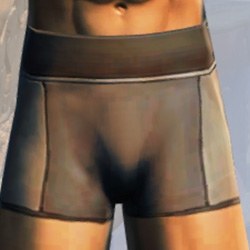 Basic Men's Trunks Armor Set armor thumbnail.