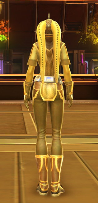 Casual Combatant Armor Set player-view from Star Wars: The Old Republic.