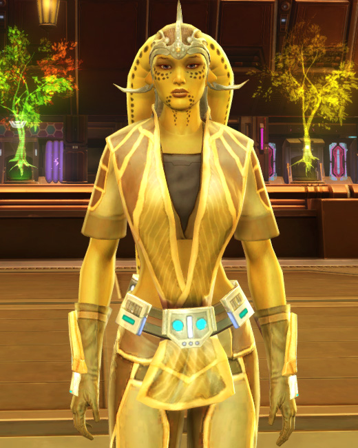 Casual Combatant Armor Set Preview from Star Wars: The Old Republic.