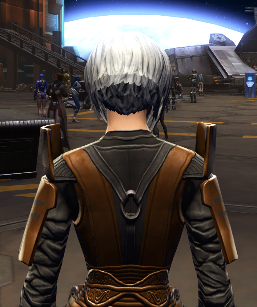 Citadel Force-lord Armor Set detailed back view from Star Wars: The Old Republic.