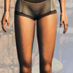 Basic Women's Underwear Armor Set armor thumbnail.