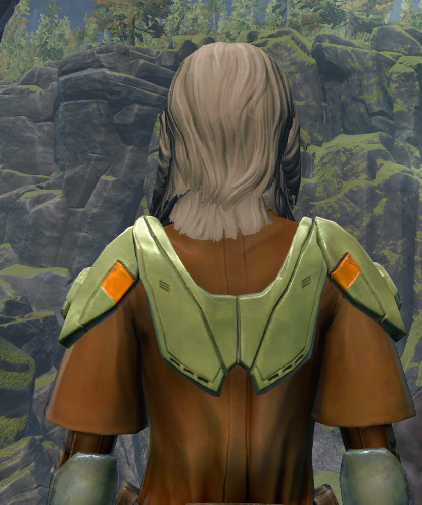 Jedi Stormguard Armor Set detailed back view from Star Wars: The Old Republic.