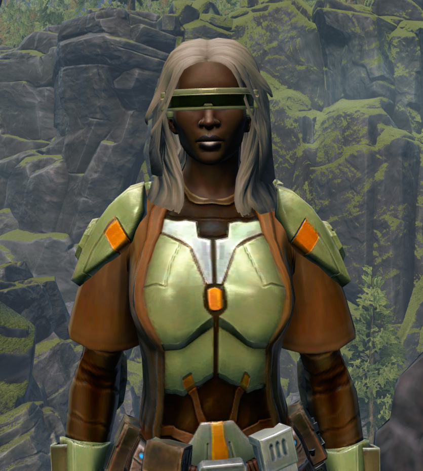 Jedi Stormguard Armor Set from Star Wars: The Old Republic.
