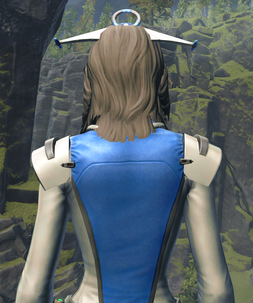 Regal Apparel Armor Set detailed back view from Star Wars: The Old Republic.