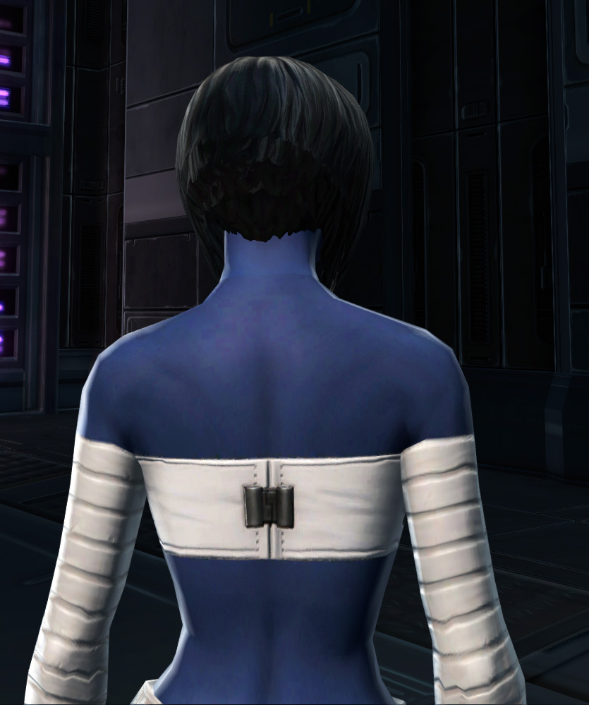 Relaxed Uniform Armor Set detailed back view from Star Wars: The Old Republic.