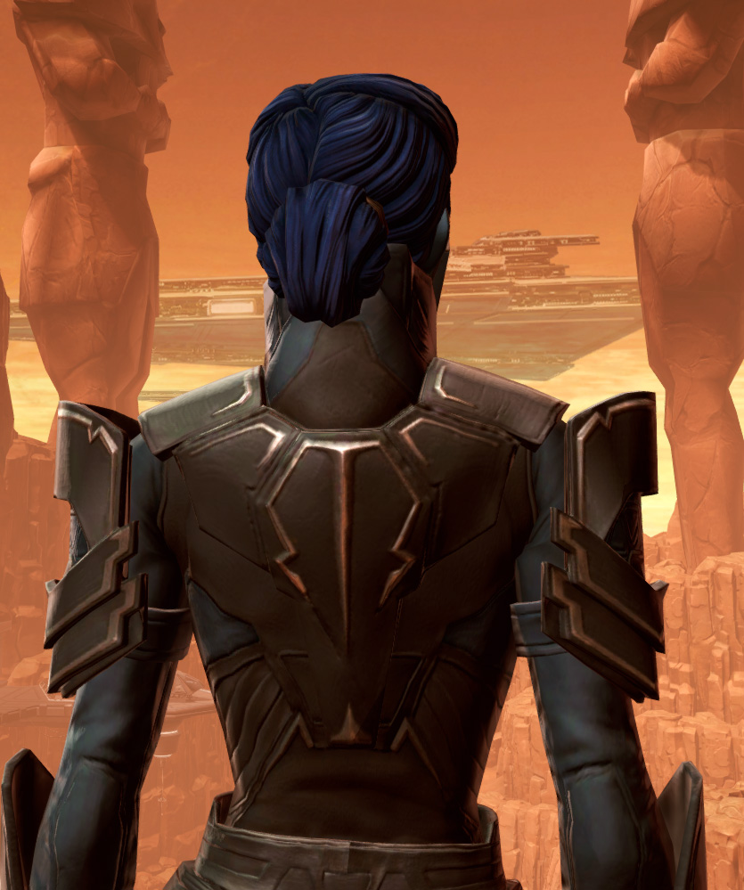 Resilient Warden Armor Set detailed back view from Star Wars: The Old Republic.