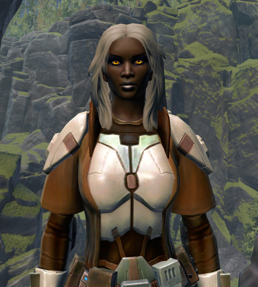 Resolute Guardian Armor Set from Star Wars: The Old Republic.