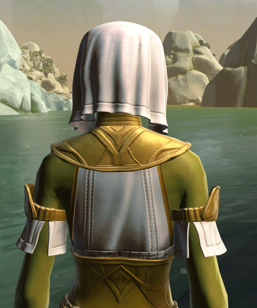 Resort Swimwear (no cape) Armor Set detailed back view from Star Wars: The Old Republic.