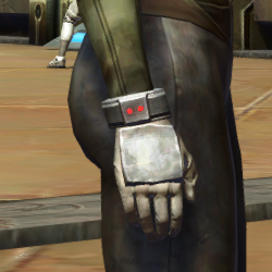 Strategist Gloves (Republic)
