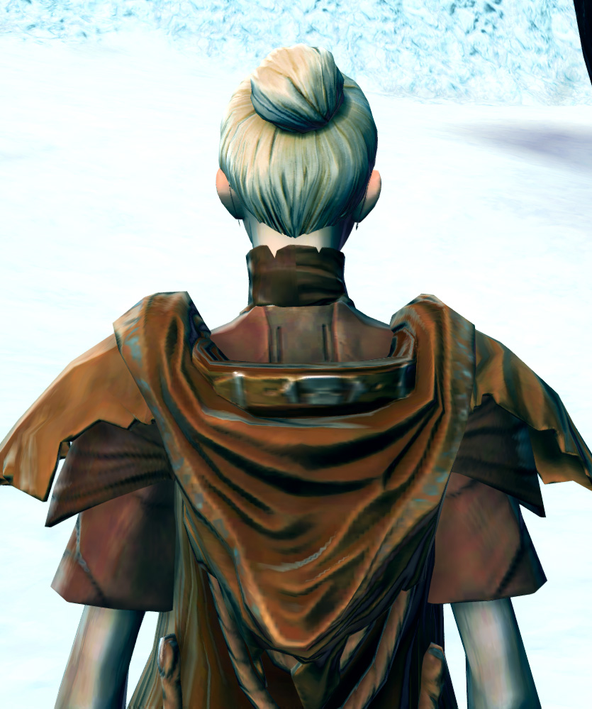 Tribal Hermit Armor Set detailed back view from Star Wars: The Old Republic.