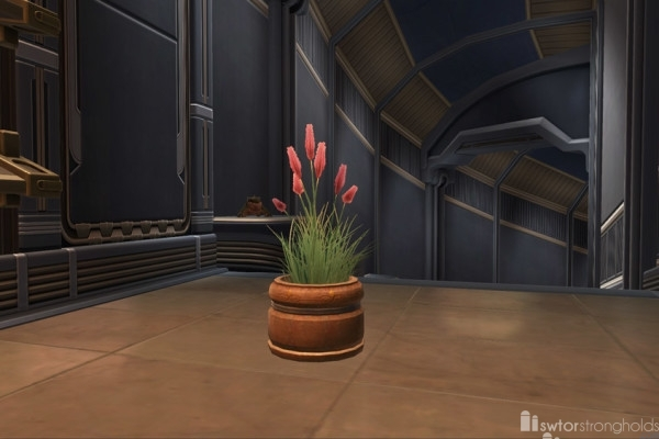 potted-planet-weed-flowers