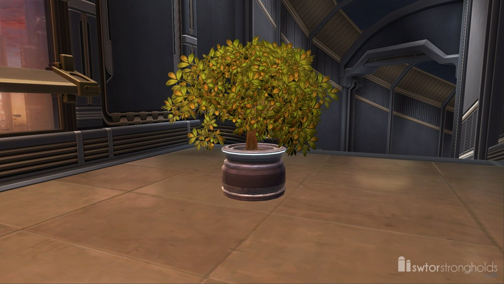 SWTOR Potted Plant: Green Bush