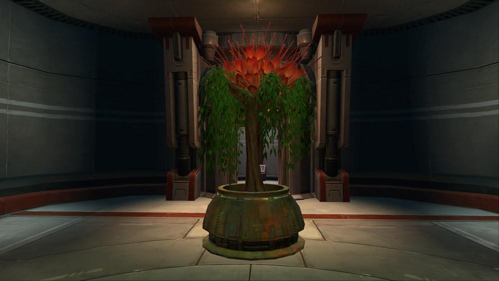 Tree: Tree of Paradise